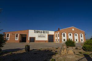 Teófilo Reserva Ribera del Duero